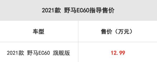 2021款野马EC60正式上市 售价12.9万元