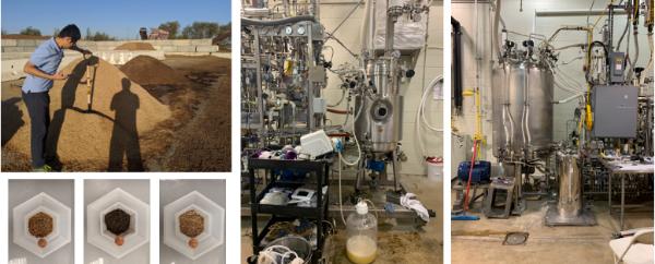 研究人员开发全新简化工艺 将木材废弃物转化为乙醇