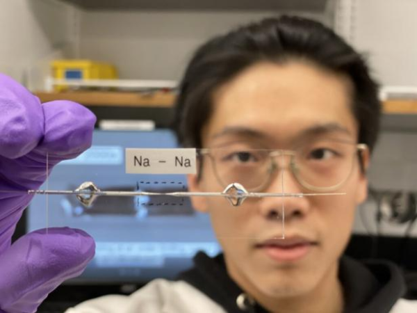 研究人员开发无负极钠离子电池 外形更小/成本更低