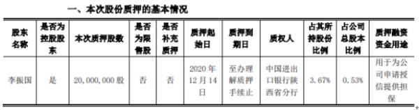 隆基股份控股股东李振国质押2000万股 用于为公司申请授信提供担保