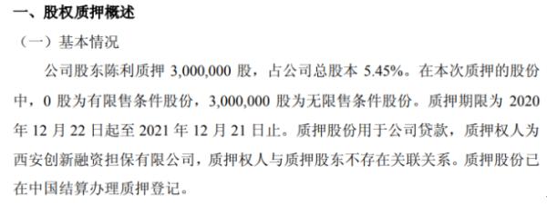 天润科技股东陈利质押300万股 用于公司贷款