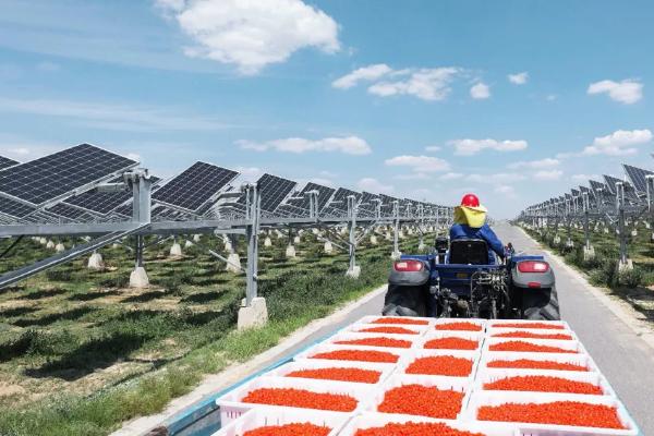 """从""""数字能源未来十大趋势"""",看华为数字能源新格局"""