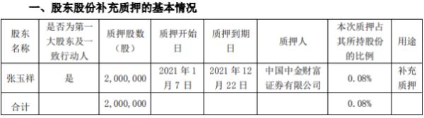 南极电商控股股东张玉祥质押200万股 用于补充质押