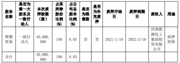 鸿博股份控股股东辉熠贸易质押4000万股 用于质押担保