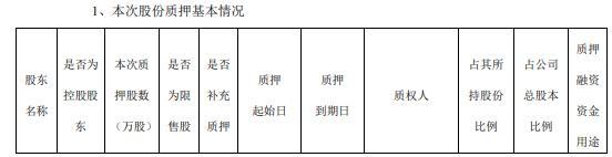 九鼎投资控股股东中江集团质押2000万股 用于偿还债务