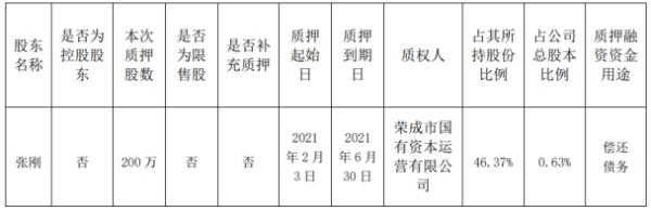山东华鹏股东张刚质押200万股 用于偿还债务