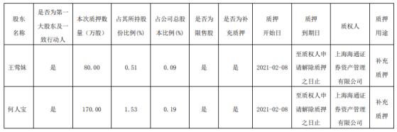 永泰科技两名控股股东共质押250万股作为补充质押