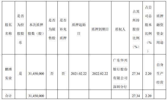 鹏博士股东鹏博实业质押3145万股 用于自身生产经营