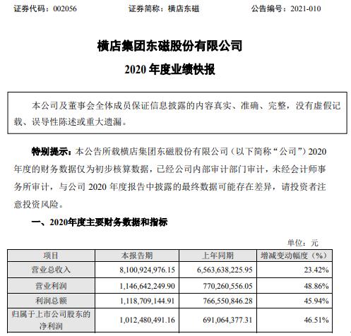 横店东磁2020年度净利10.12亿增长46.51% 各业务板块蒸蒸日上