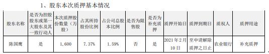 国脉科技控股股东陈国鹰质押1600万股 用于补充质押