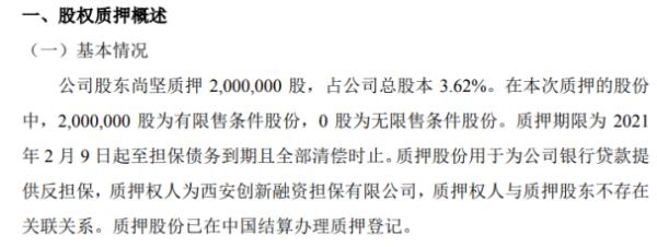 远古信息股东尚坚质押200万股 用于为公司银行贷款提供反担保