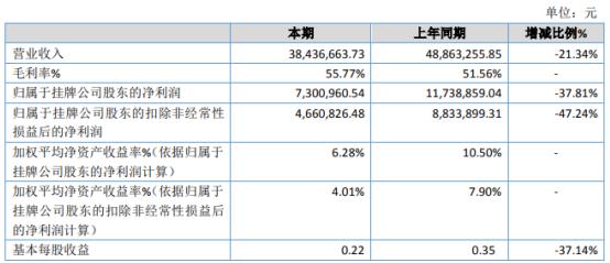 华仿科技2020年净利730.1万下滑37.81% 营业外收入减少