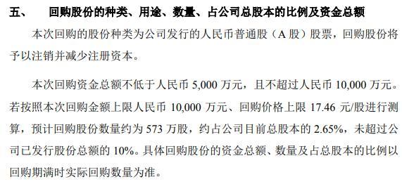 康斯特将花不超1亿元回购公司股份 用于减少公司注册资本