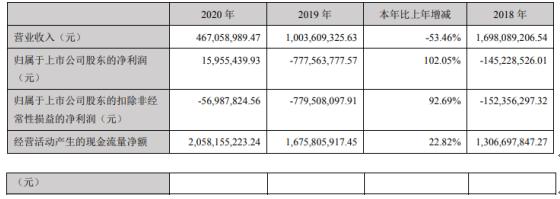 *ST胜尔2020年净利1595.54万:董事长陈明军薪酬67.27万