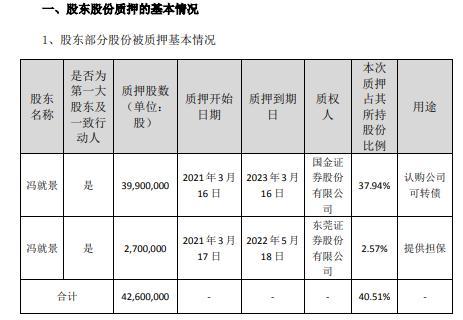 日丰股份控股股东冯就景合计质押4260万股 用于认购公司可转债、提供担保