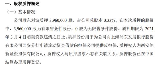 大唐科技股东刘波质押396万股 用于为公司借款提供反担保