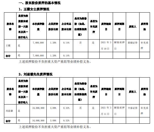 天马集团两名控股股东共质押2300万股作为补充质押