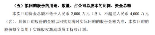 泰禾智能将花不超4000万元回购公司股份 用于股权激励