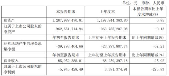 泰禾智能2021年第一季度亏损594.54万 理财产品收益减少