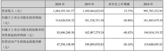 瑞尔特2020年净利下滑36.86% 董事长罗远良薪酬76万