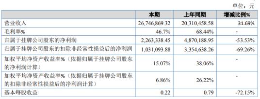 莱易信产2020年净利下滑53.53% 技术开发服务项目开展较晚