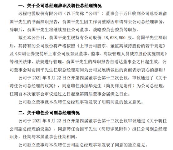 ST远程总经理俞国平辞职 孙振华接任