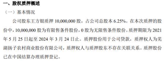 美佳新材股东王方银质押1000万股 用于公司贷款