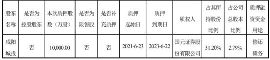 彩虹股份股东咸阳城投质押1亿股 用于偿还债务