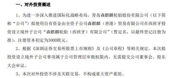森麒麟拟使用自有资金3000欧元由全资子公司设立境外子公司