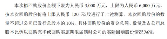 鸿远电子将花不超6000万元回购公司股份 用于股权激励