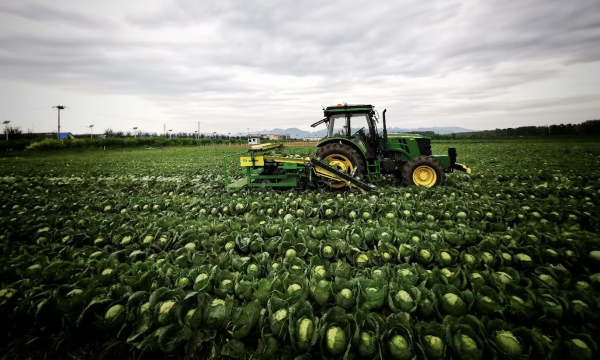 智能农田作业机器人中科原动力完成数千万元A轮融资