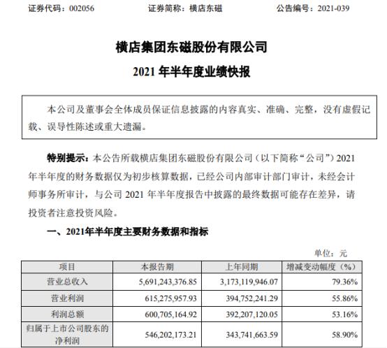 横店东磁2021年上半年净利5.46亿增长58.9% 拓展产业发展空间