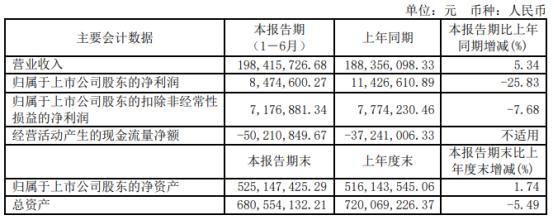 海量数据2021年上半年净利847.46万下滑25.83% 销售费用增长