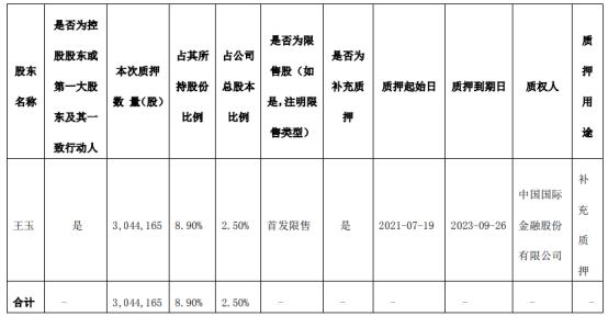 若羽臣控股股东王玉质押304.42万股 用于补充质押