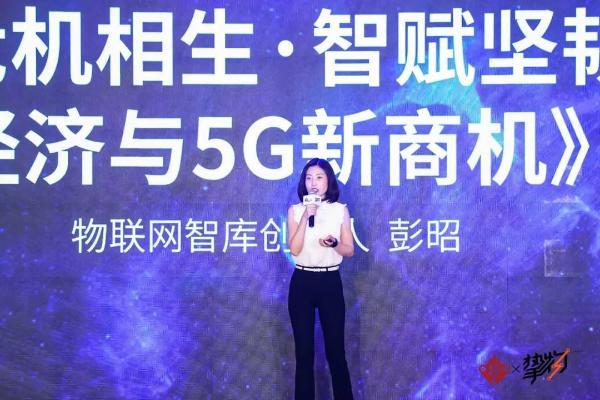 物联网智库创始人彭昭:AIoT产业危机相生 智赋坚韧
