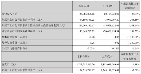 *ST中迪2021年半年度亏损8418.05万元 同比亏损增加1,305.16%