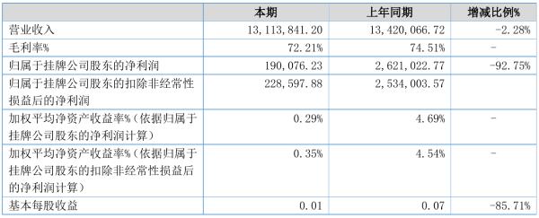 大洋义天2021年半年度净利19.01万元 同比净利减少92.75%