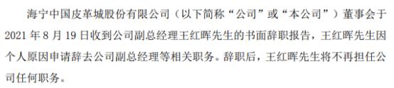 海宁皮城副总经理王红晖辞职 2020年薪酬为55.45万