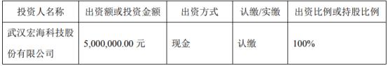 宏海科技拟投资500万元设立全资子公司武汉宏冠达商贸有限公司