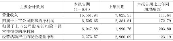 纳微科技2021年半年度净利6505.65万 同比净利增加172.79%