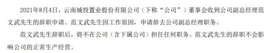 *ST云城副总经理范文武辞职 上半年公司净利3.05亿