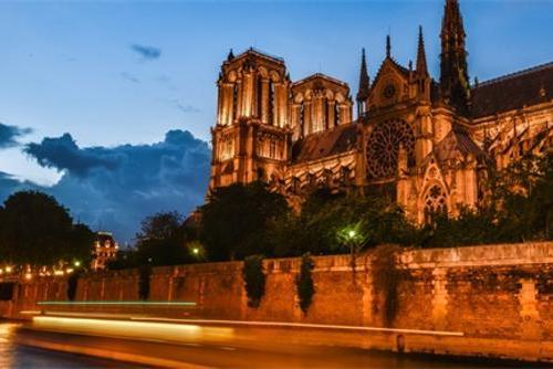 逃过一劫!巴黎圣母院18万只蜜蜂还活着 无人机拍到...