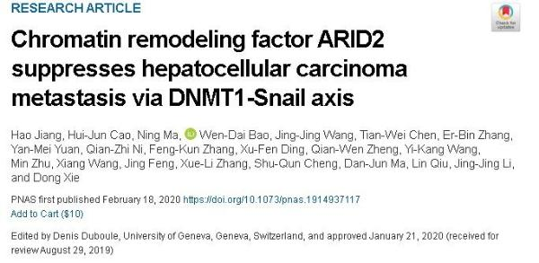 全球致死率第三的癌症!新研究:ARID2可调控肝癌细胞转移 有助改善治疗
