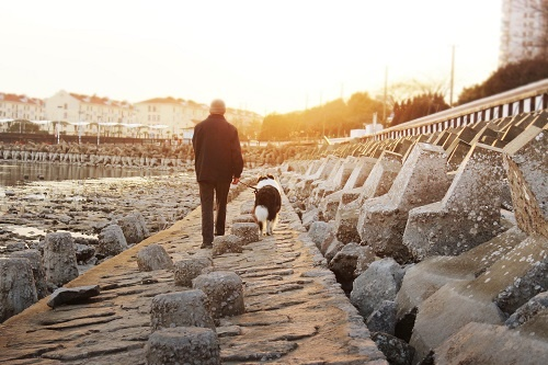 长寿秘方是散步?科学家研究十年后发现:每日步数越多,死亡率越低