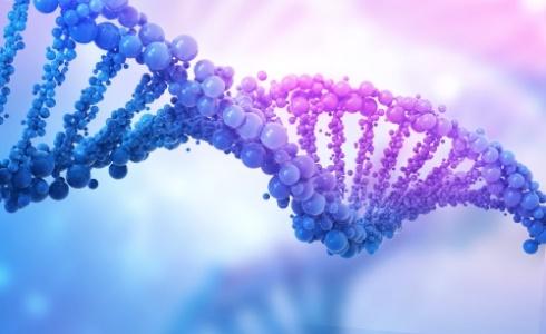 只要敲掉1个基因 无法治愈的糖尿病就治好了?