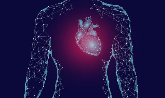新研究发现:心肌蛋白在心肌梗死中起着重要凝血作用