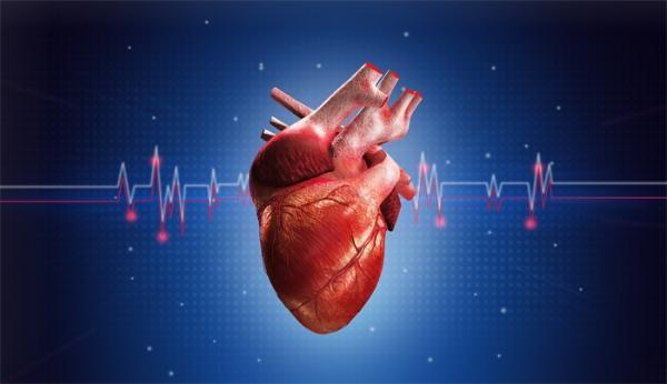 正当其时!心肺复苏将被纳入教育内容,我国仅1%人群掌握该基本急救技巧