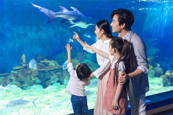 高原上的海洋馆!西藏拉萨首家海洋馆开馆,距离布达拉宫仅有5公里