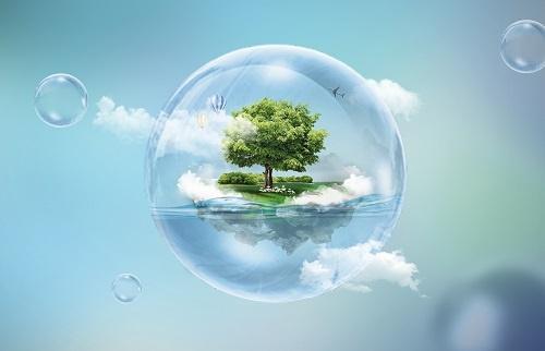 减少塑料污染!科学家研发出由藻类制成的人字拖 16周即可生物降解