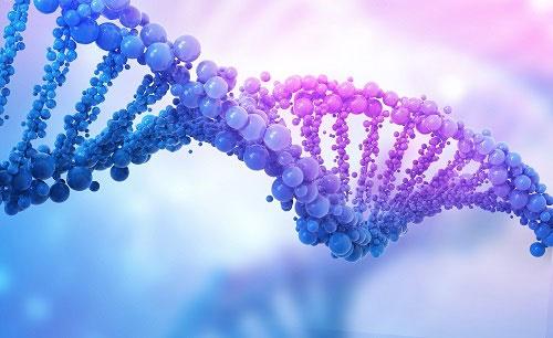 """其实很有用!DNA中""""沉默的大多数""""藏着正确""""开关""""基因的秘密"""